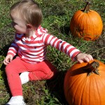 pumpkin picking 2014